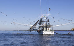 De Boot van Shrimping van de golfkust Royalty-vrije Stock Foto