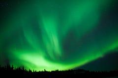 De boreale boswerveling van taiga Noordelijke Lichten substorm Stock Foto