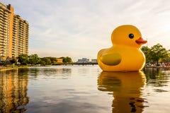 ` De borracha do pato do ` da escultura em Norfolk, Virgínia foto de stock royalty free