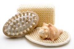 De borstel en de spons van de massage royalty-vrije stock foto's