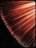 De borstel van de verf Stock Foto's