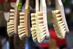 De Borstels van de schoen   Stock Afbeelding