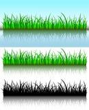 De borstels van het gras Stock Foto's