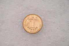 De borttappade mynten på en snö royaltyfri fotografi