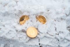 De borttappade pengarna Copprito mynt av guld- bitcoin ligger på snön Inget behövd I vinter på vägen spår av royaltyfri bild
