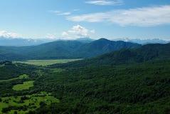 De bos de hemelzomer van het berglandschap Royalty-vrije Stock Fotografie