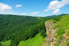 De bos de hemelzomer van het berglandschap Stock Foto's