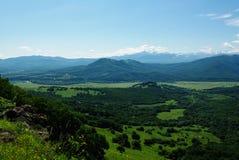 De bos de hemelzomer van het berglandschap Stock Foto