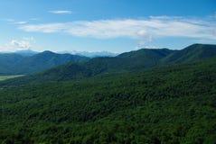 De bos de hemelzomer van het berglandschap Royalty-vrije Stock Afbeeldingen