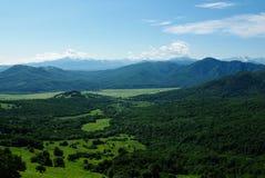 De bos de hemelzomer van het berglandschap Royalty-vrije Stock Foto's