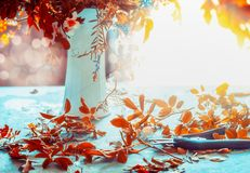 De bos en de vaas van de herfstbloemen op blauwe lijst met zonneschijn Comfortabele huisbinnenhuisarchitectuur Het stilleven van  stock afbeelding