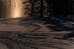 De bos het zonlichtwinter van de zonsondergangsneeuw Royalty-vrije Stock Foto