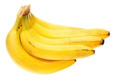 De bos van bananen Stock Afbeelding