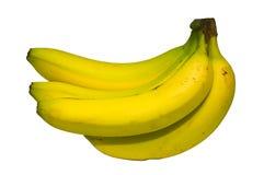 De bos van de banaan Stock Fotografie