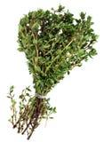 De bos van de thyme Royalty-vrije Stock Afbeelding