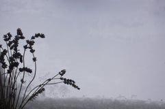 De bos van gesneden lavendel bloeit op sneeuwvenster voor ontwerp heel wat exemplaarruimte royalty-vrije stock fotografie