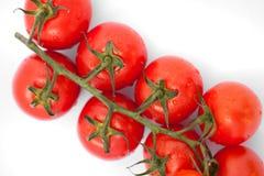 De bos van verse tomaten met water daalt Stock Afbeelding