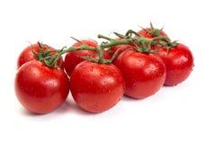 De bos van verse tomaten met water daalt Geïsoleerdj op witte achtergrond Stock Afbeeldingen