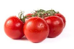De bos van verse tomaten met water daalt Geïsoleerdj op witte achtergrond Stock Fotografie