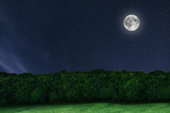 De bosachtergrond van de nachthemel met maan en sterren Volle maan Royalty-vrije Stock Fotografie