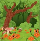 De bosachtergrond van de zomer Royalty-vrije Stock Afbeeldingen