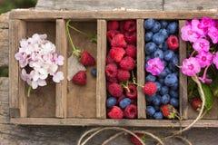 De bosbessen en de frambozenwaterdruppeltjes van de zomerbessen zichtbaar bij 100% Stock Foto's