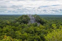 De bosbomen van piramidesmexico Uxmal stock afbeeldingen