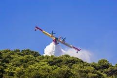 De bosbrand van het vliegtuig canadair water Stock Fotografie