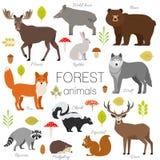 De bosdieren isoleerden vectorreeks Stock Afbeelding