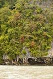 De boseilanden Stock Foto