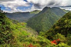De bosheuvels van Puerto Rico royalty-vrije stock fotografie