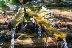 De boslente, Meer Baikal royalty-vrije stock fotografie