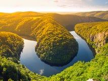 De bosmeander van de Vltavarivier in Tsjechische Republiek Stock Afbeeldingen