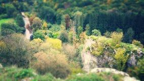 De bosrotsen van de wandelingsaard natuur stock foto's