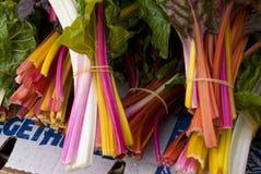 De bossen van de regenboogsnijbiet royalty-vrije stock foto's