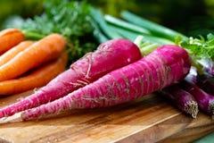 De bossen van vers rood snakken radijs, wortelen en purpere ui, nieuwe oogst van gezonde groenten royalty-vrije stock afbeeldingen