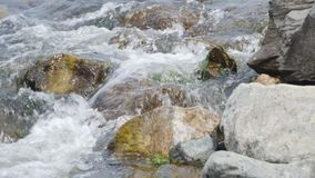 De bosstroom, het Stroomwater en de Groene Bemoste Rotsen, Moss On The Rocks Forest-Stroom, Bosrivier, Water lopen snel stock videobeelden