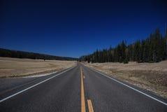 De bosweg van Kaibab, Arizona Royalty-vrije Stock Fotografie