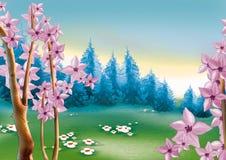 De bosweide van de lente Stock Fotografie