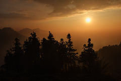 De BosZonsondergang van de berg Royalty-vrije Stock Foto