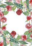 De botanische illustratie van het kersenkader Kaartontwerp met Kersenbloemen en blad Waterverf botanische illustratie Stock Afbeelding