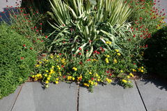 De Botanische Tuin Juli 2014 21 van New York Royalty-vrije Stock Foto's