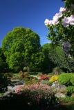De Botanische tuin van Christchurch stock fotografie