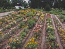 De botanische tuin van het bloempark royalty-vrije stock foto