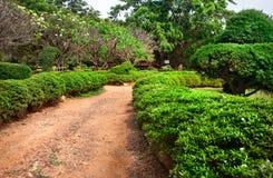 De botanische tuin van Lalbagh in Bangalore Stock Afbeeldingen