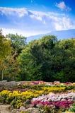 De tuin van de zomer royalty-vrije stock afbeelding