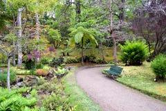De botanische tuin van Terra Nostra in Furnas, de Azoren, Portugal royalty-vrije stock foto's