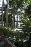 De Botanische Tuin van Verenigde Staten stock afbeelding