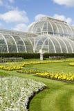 De Botanische Tuinen van Kew van het palmhuis royalty-vrije stock foto's