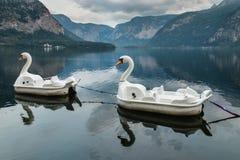 De boten van de zwaanpeddel bij Hallstatt-meer in Oostenrijk worden vastgelegd dat stock fotografie